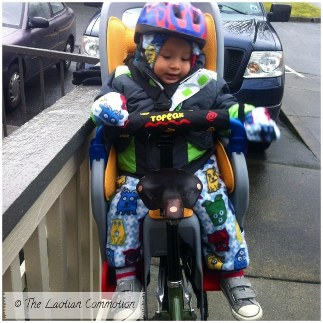 22 months old toddler Topeak bike seat