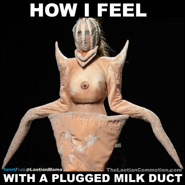 How to cure plugged milk ducts in 48 hours | The Laotian Commotion