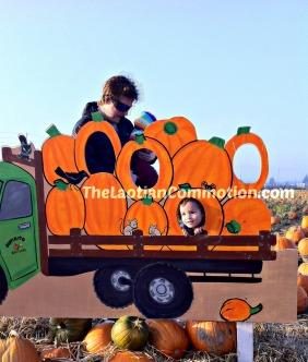 awkward pumpkin patch  TheLaotianCommotion.com
